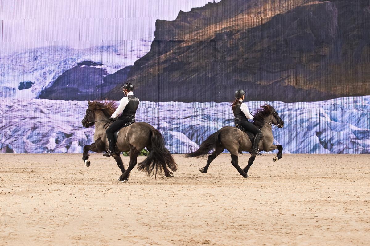 Från fjolårets show. Foto: Jessica Stene, www.jessicastene.se
