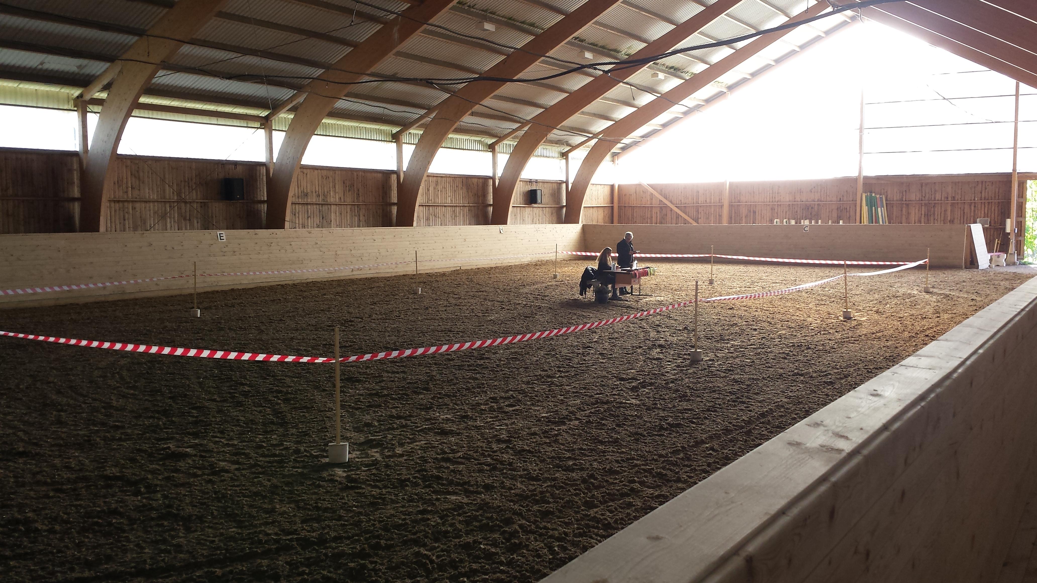 Banan där hästarna bedömdes Foto: Emelie Ahltén