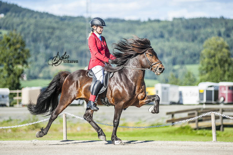 The winners Foto: Sofie Lahtinen Carlsson