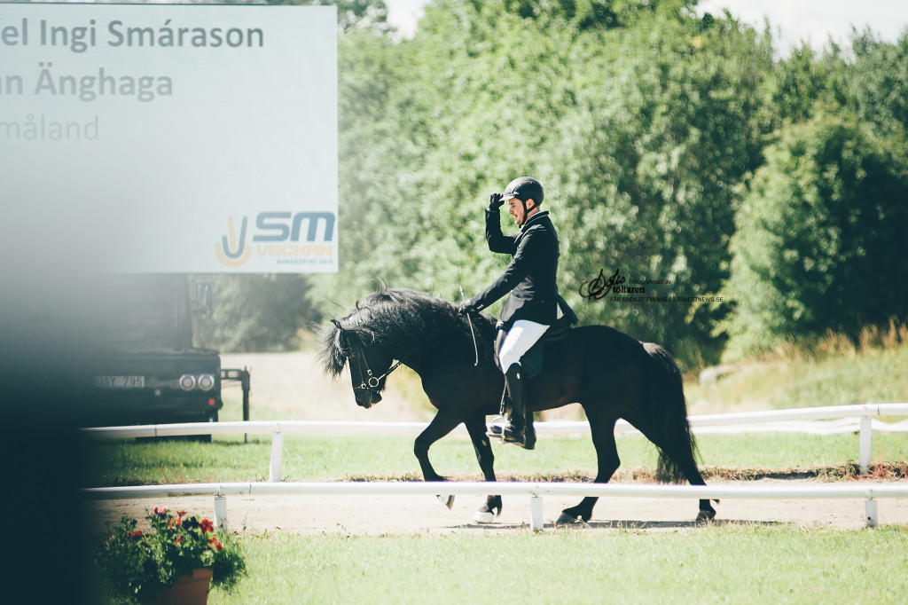 YES! Där satt den! / foto: Sofie Lahtinen Carlsson www.toltaren.wordpress.com
