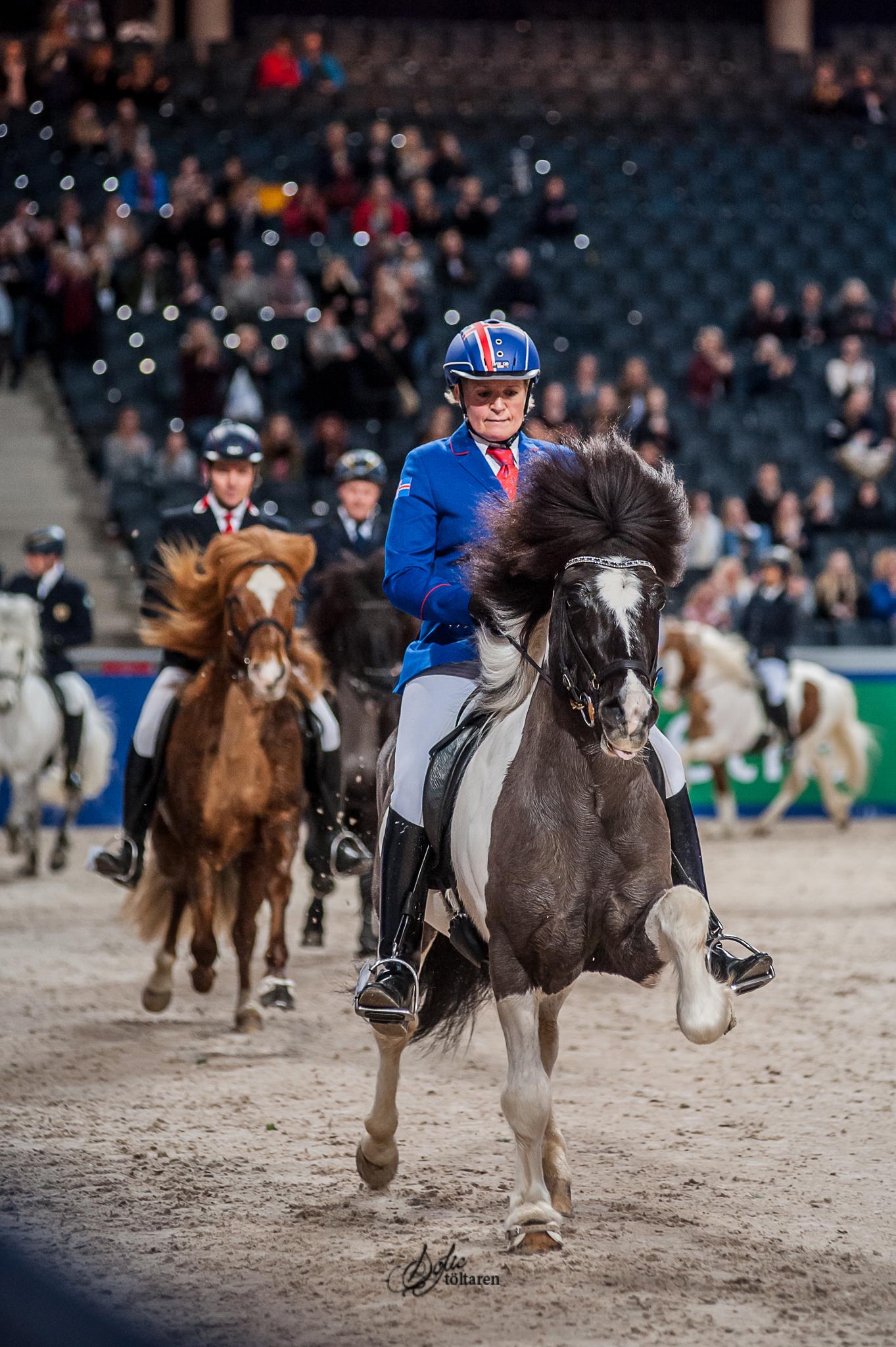 Foto: Sofie Lahtinen Carlsson, www.toltaren.wordpress.com