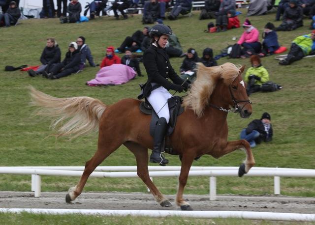 Gletta snyggt riden av Adalheidur Anna Gudjonsdottir Foto: Yvonne Benzian/ishestnews.se