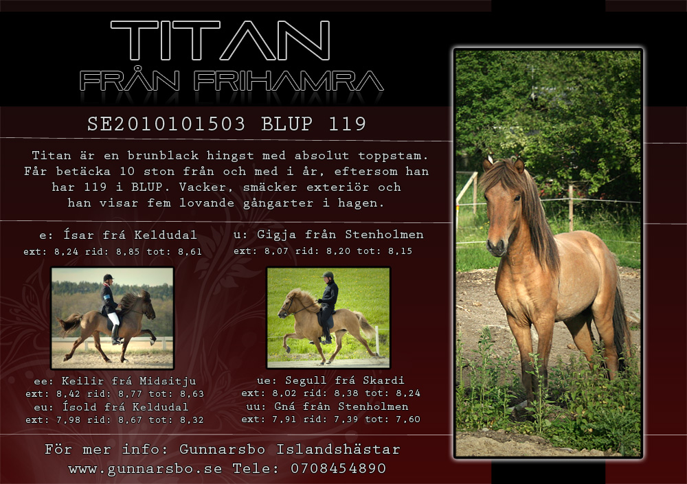 Hingstnnonsannons_Titan2liten1