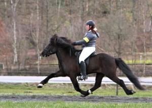 Och syrran Olivia Heltén knep tredjeplaceringen på sin nya bekantskap Krókur frá Efri-Raudalaek. Foto: Yvonne Benzian/Ishestnews