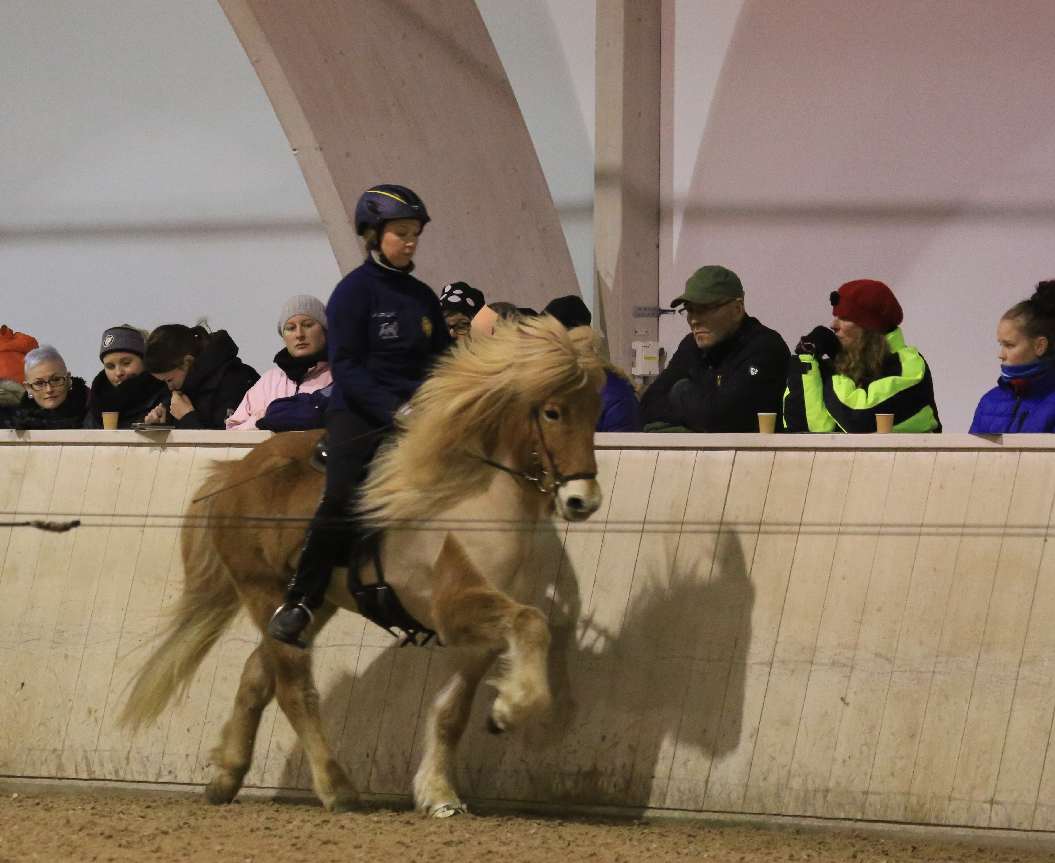 Tekla och Hekla! Foto: Yvonne Benzian/ishestnews.se