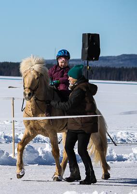 Hingsten Isak med Alvar på ryggen och Johanna som ledare Foto: Diana Nyström/www.dhag.tk