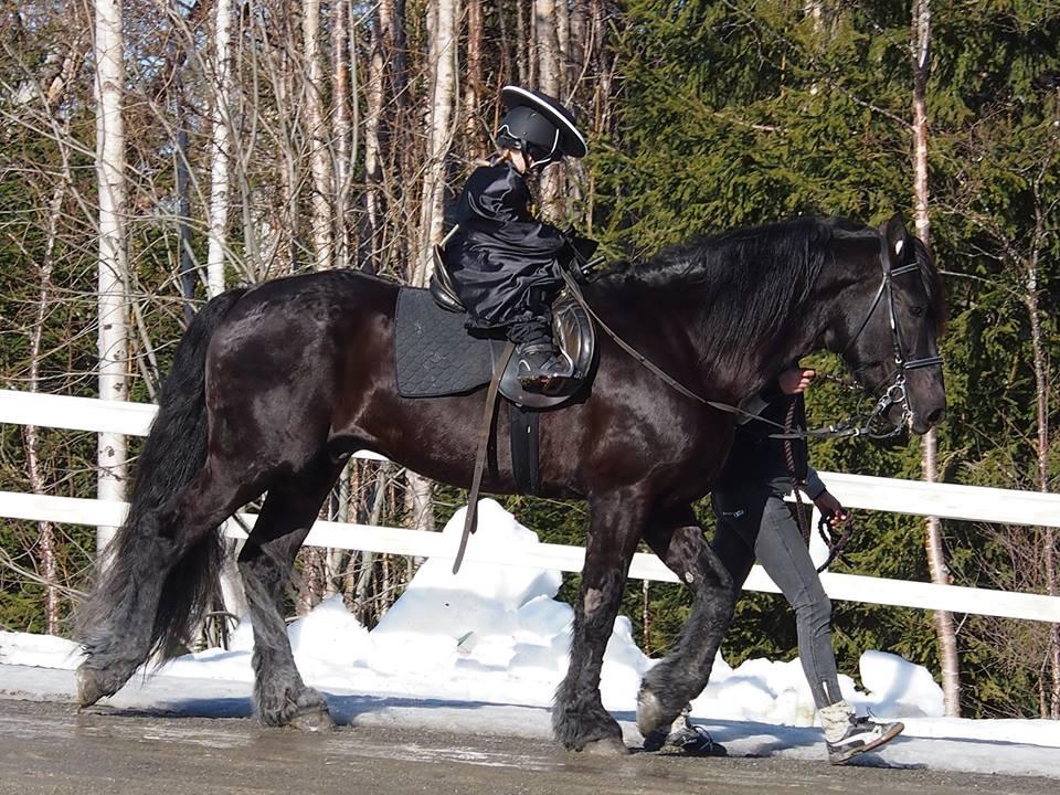 Vinnare i barnklassens maskerad - Zorro
