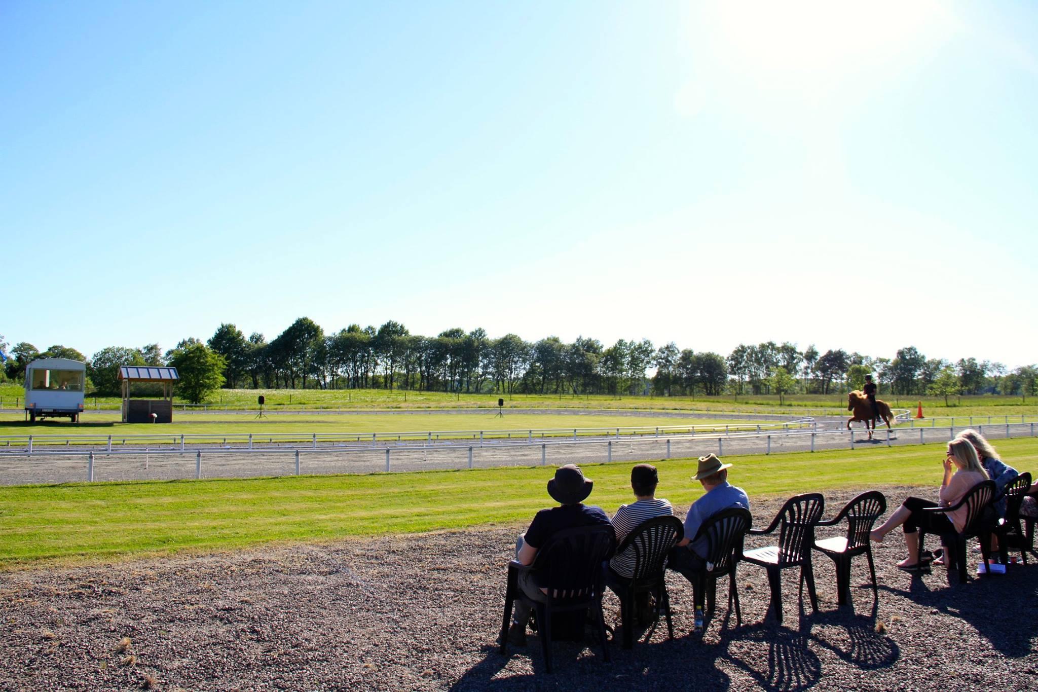 Publiken njuter av sol och fina hästar