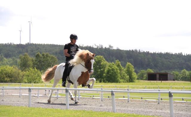 Álfadans fra Kringeland, totalt 8,37 och Erlingur Erlingsson  Foto: Johanna Wingstrand