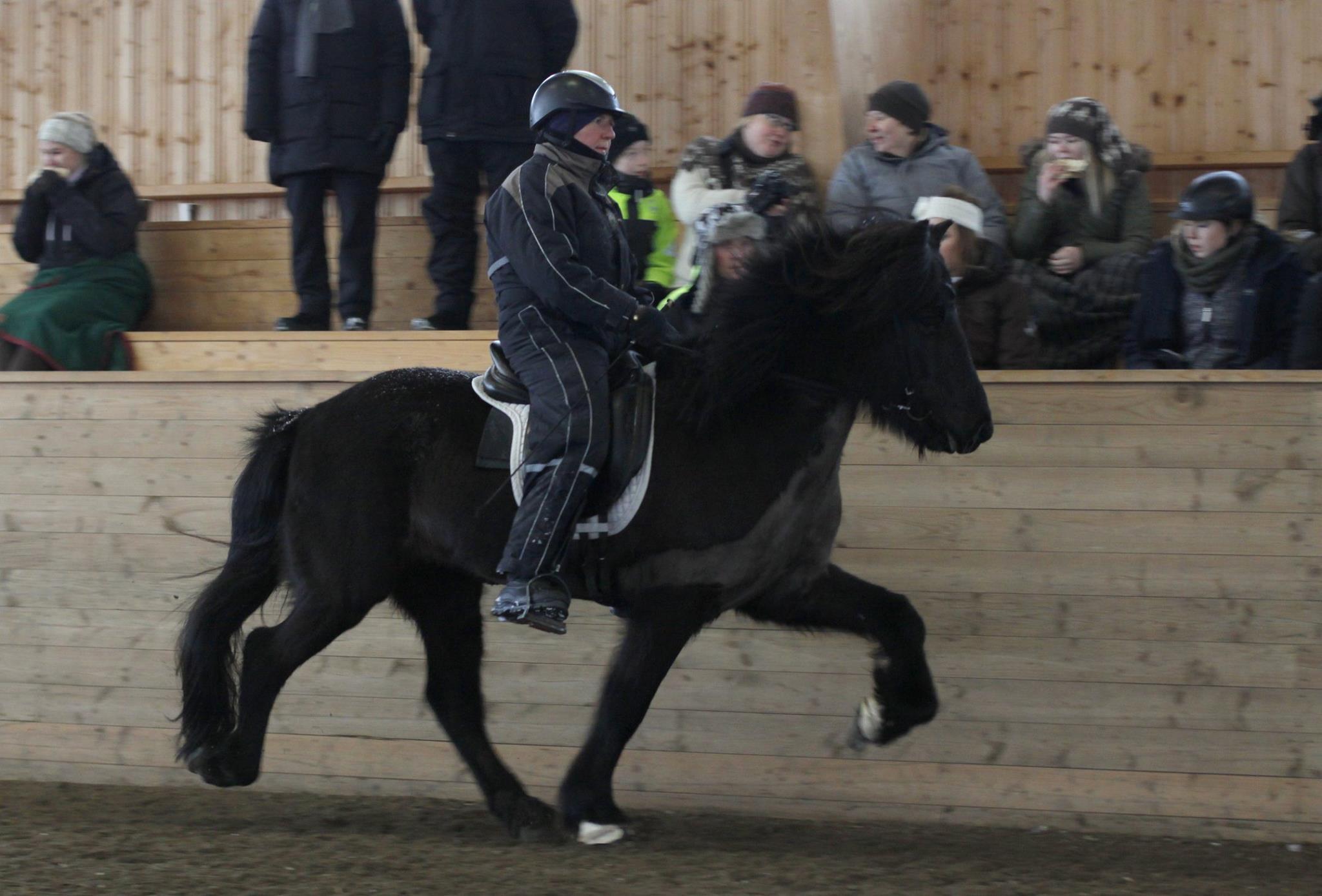 Anneli Nordgren -Dufa ur laget VillaFridhem / Vånga Vilt. Foto: Matilda Persson