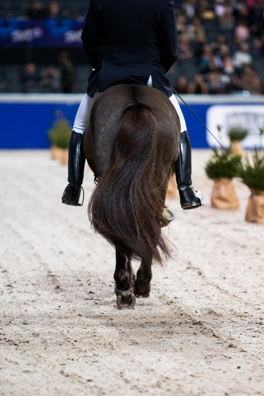 Foto: Jessica Stene, www.jessicastene.se