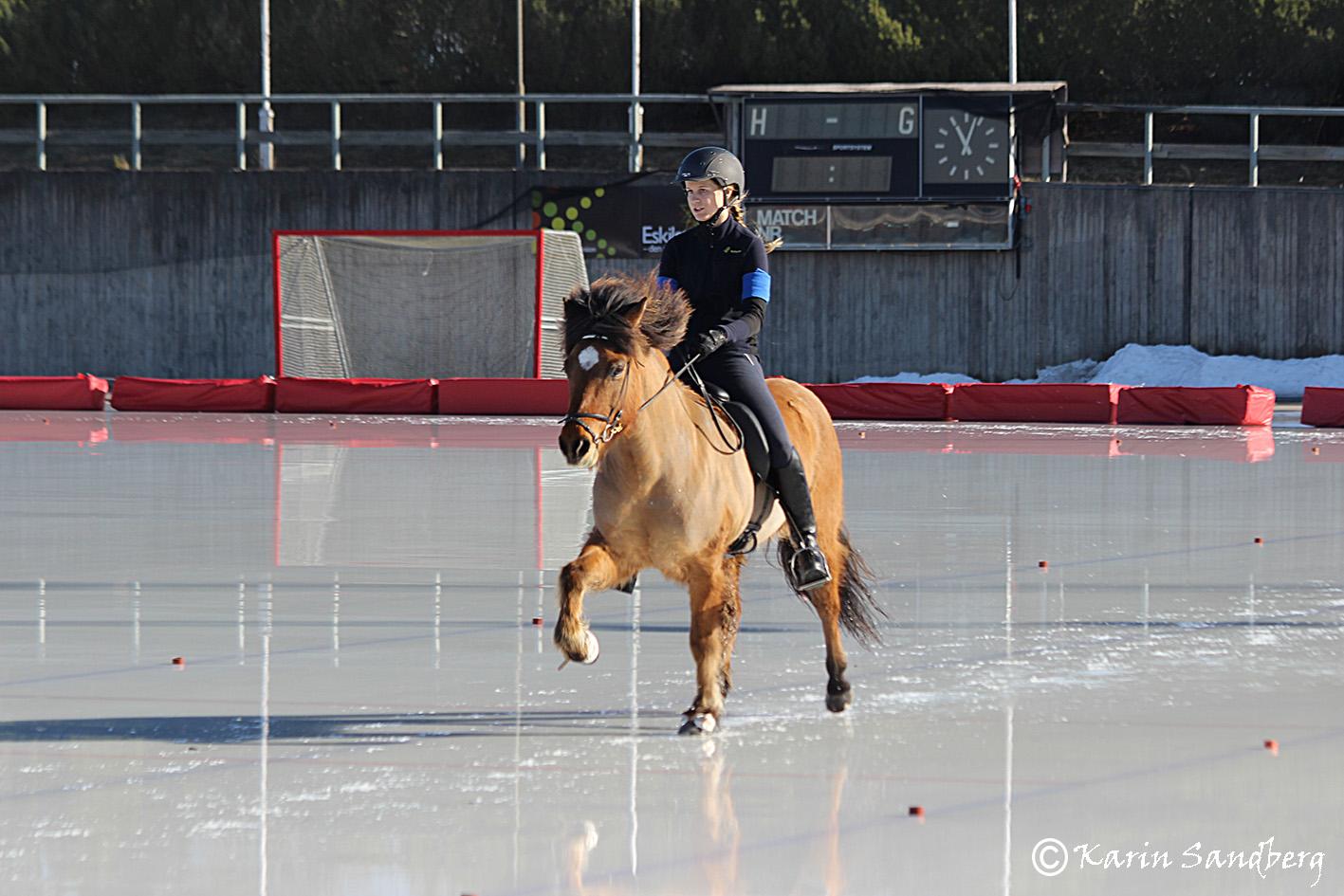 Alice Ingeström på Halastjarna från Laggarbo Foto: Karin Sandberg