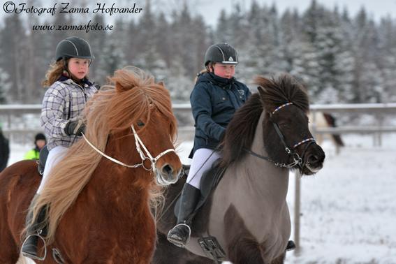 Alma,Feykir&Moa,Teitur