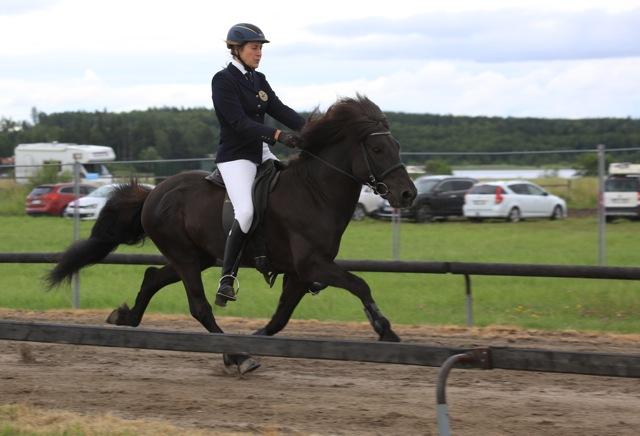 Ungdom och Svenska Mästare! Annie och Prins. Foto: Yvonne Benzian/ishestnews.se