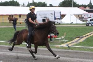 Gammal vet bäst. Och är snabbast! 19-årige Lótus ligger i ledning. Foto: Karin Cederman/Ishestnews