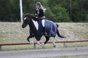 Svensk mästare i GDC Matilda Husbom och Otur fra Lille Nørregård8,215 Foto: Malin Wengdahl/wengdahl.se