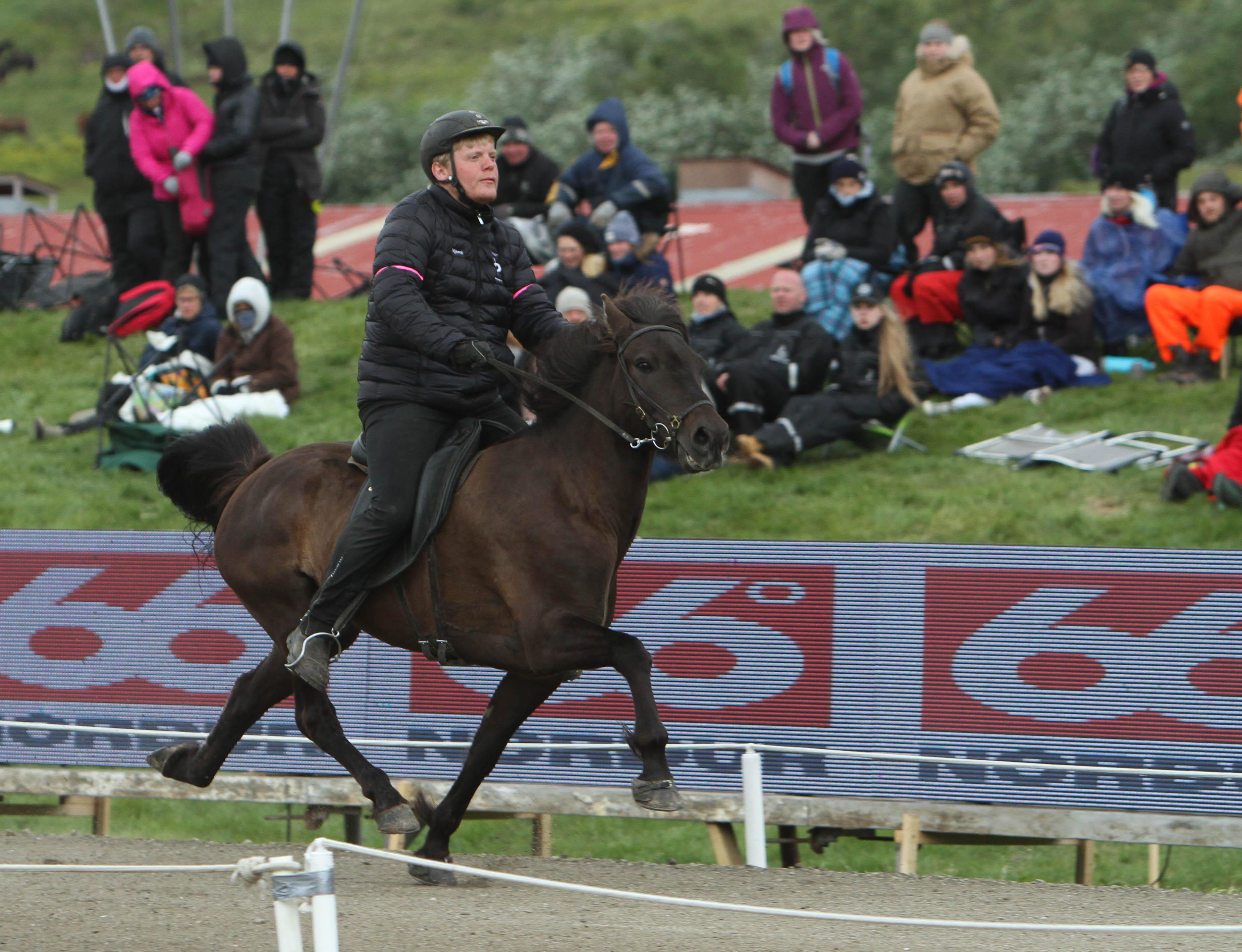 Mot världsrekordet! Bjarni och Hera! Foto: Karin Cederman/ishestnews.se