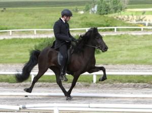 Blökk frá Laugarbökkum fick 8.47 i ridegenskaper. Foto: Karin Cederman/ishestnews.se