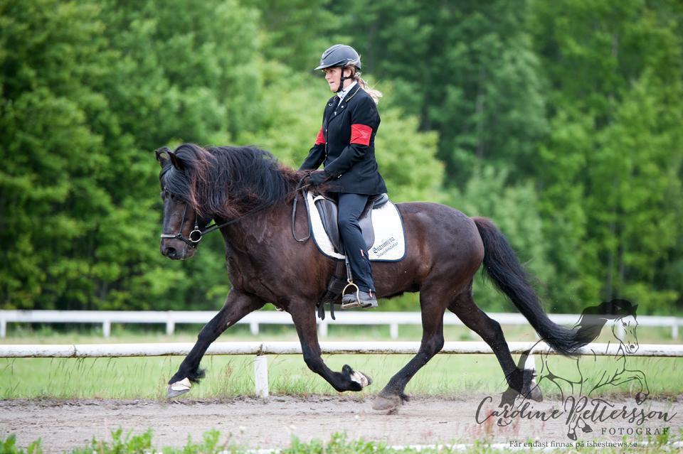 Camilla Andersson Rolfsdotter med hästen Stjörnudis från Granmyra Foto: Caroline Pettersson