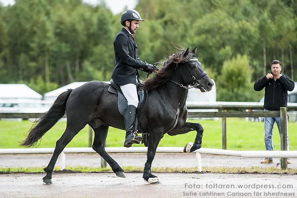 Kristall frá Búlandi och Finnur Bessi Svavarsson än så länge på 3:e plats inför finalen. 8.342