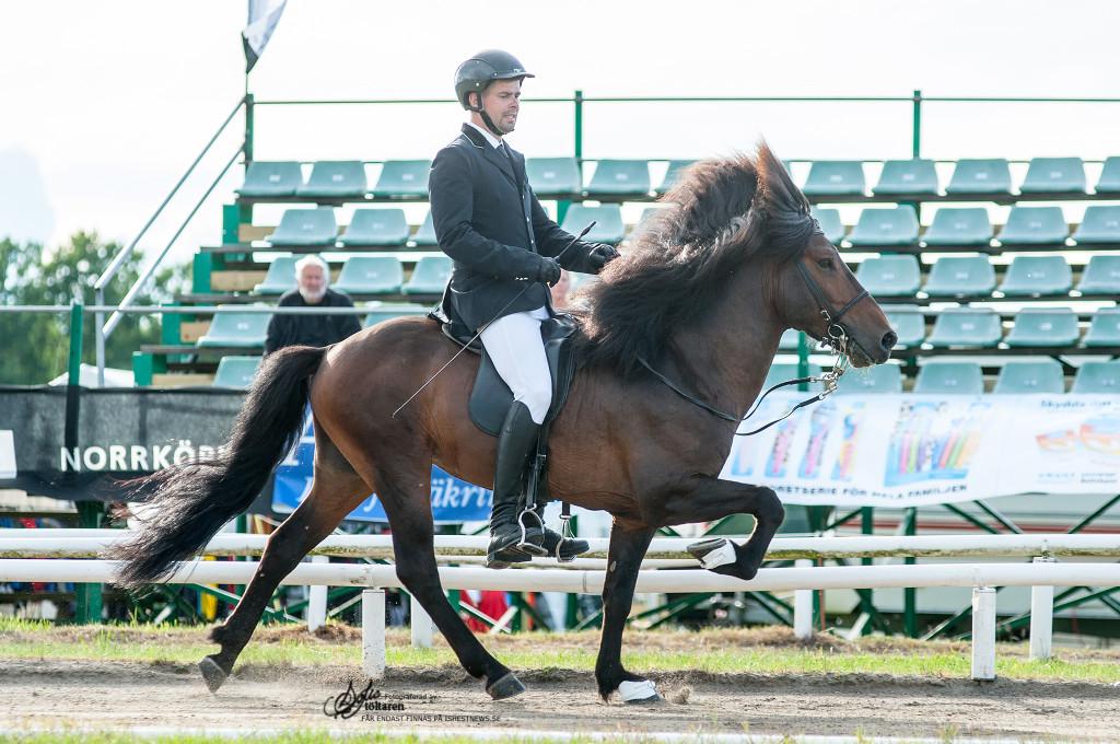 ...och med Darri! / foto: Sofie Lahtinen Carlsson www.toltaren.wordpress.com