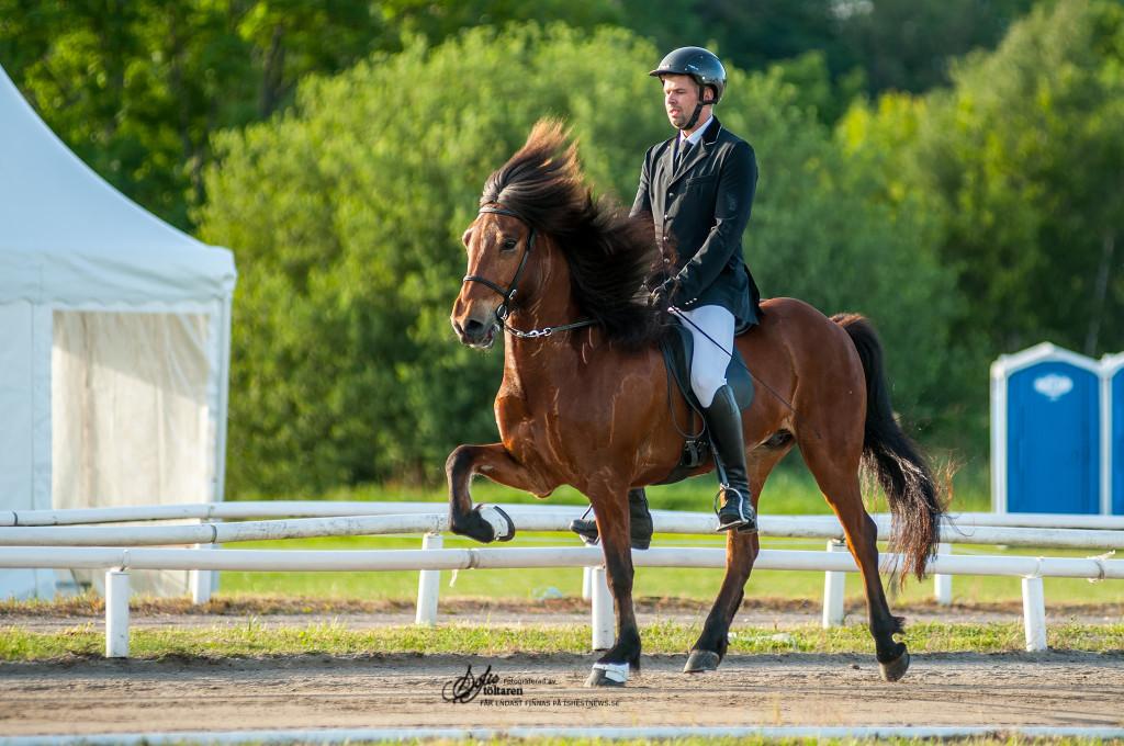 Eyjo med Hlekkur... / foto: Sofie Lahtinen Carlsson www.toltaren.wordpress.com