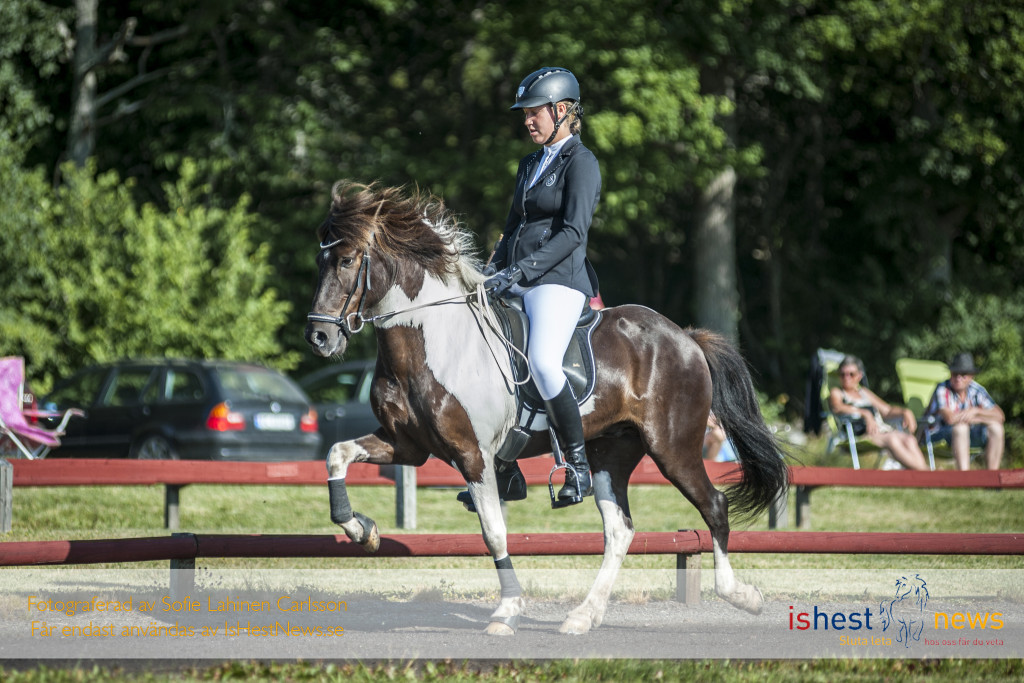 Mjukt och fint rider sig Hanne in på en tredjeplats inför finalen, vilket teamwork!