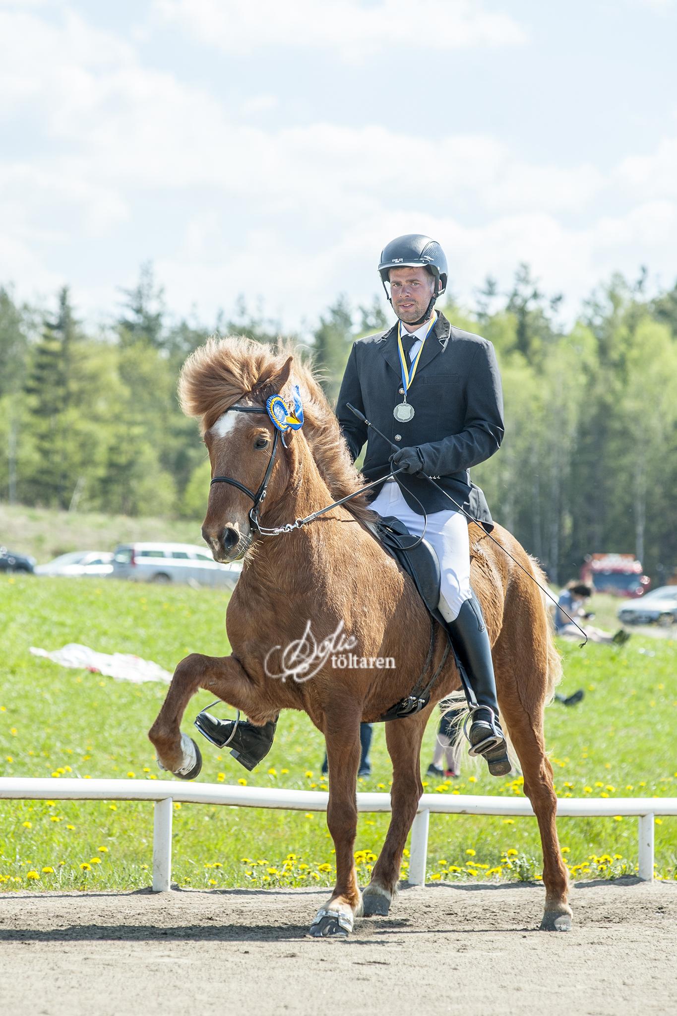 Eyjo och Háfeti, segrarna i T1-finalen Foto: Sofie Lahtinen Carlsson