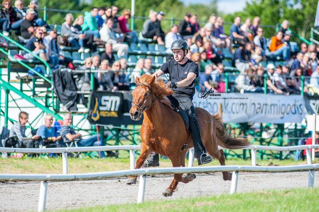 Full fart framåt Danni! / foto: Sofie Lahtinen Carlsson, www.toltaren.wordpress.com