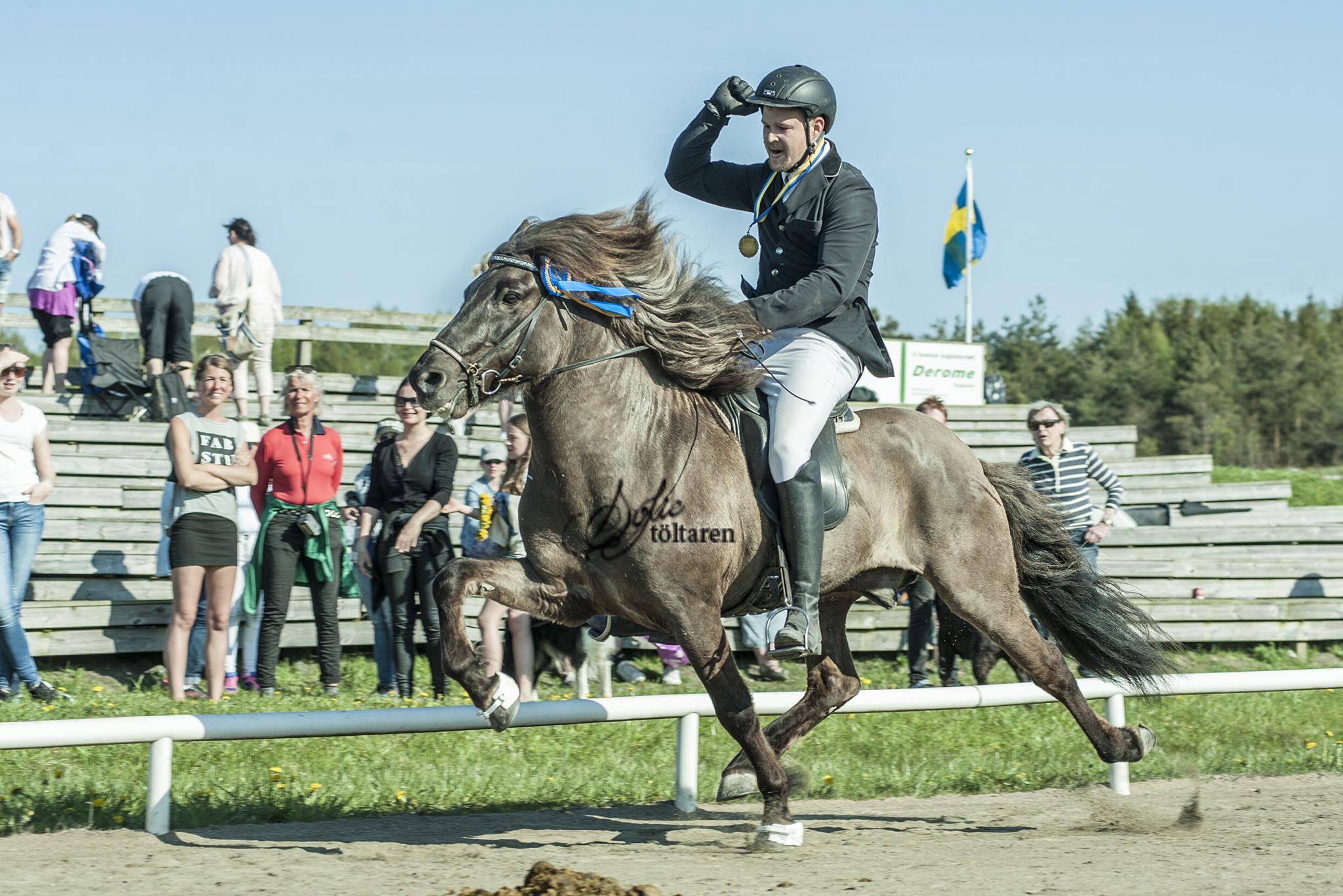 Sebastian och Herakles vann F1 Foto: Sofie Lahtinen Carlsson