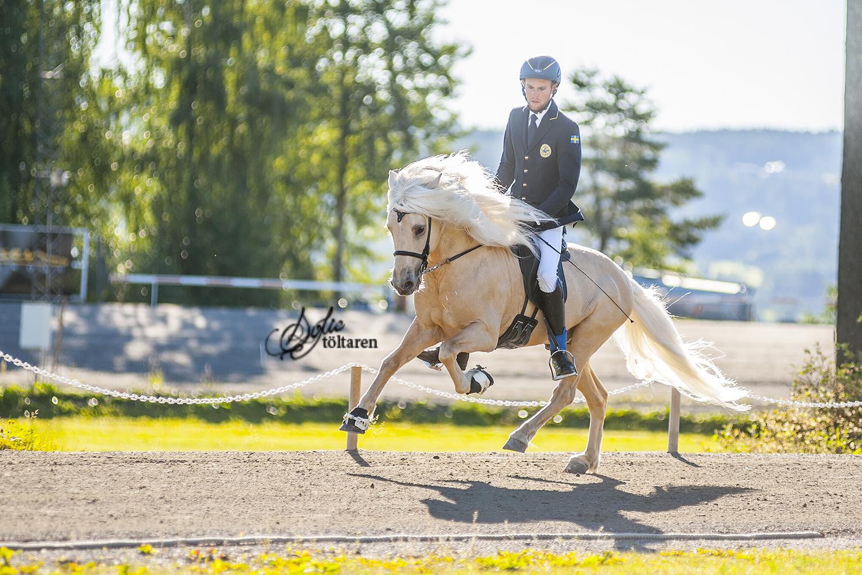 Marcus och Seifur kom på femte plats Foto: Sofie Lahtinen Carlsson