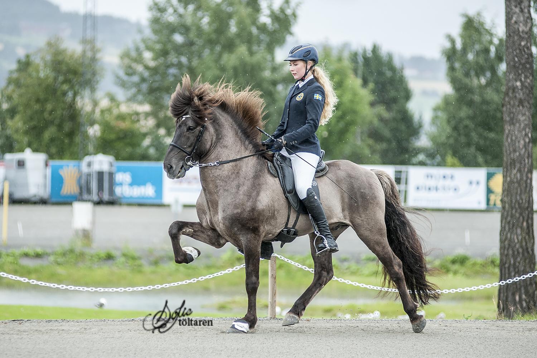 Filippa Hellén och Máni frá Galtanesi till A-final Foto: Sofie Lahtinen Carlsson