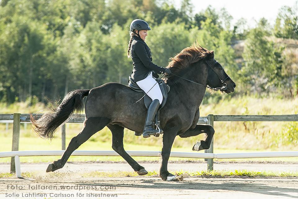 Två som hade kul! Skuggi från Lillebo - Maria Eriksson 8,248, tvåa i GDT