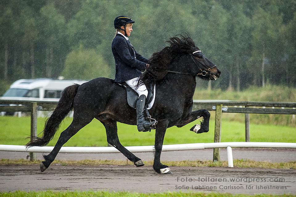Hrafndynur frá Hákoti och Unn Kroghen Adalsteinsson, än så länge på 3:e plats 8.528