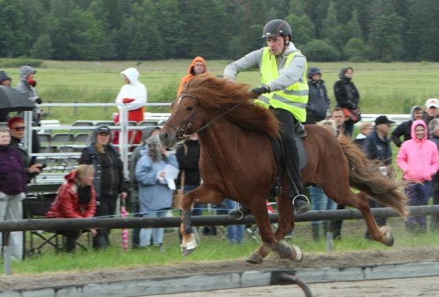 Snabbaste tiden! Daniel Ingid Smárason  på Graedir frá Dalbae. Foto: Karin Cederman/ishestnews.se