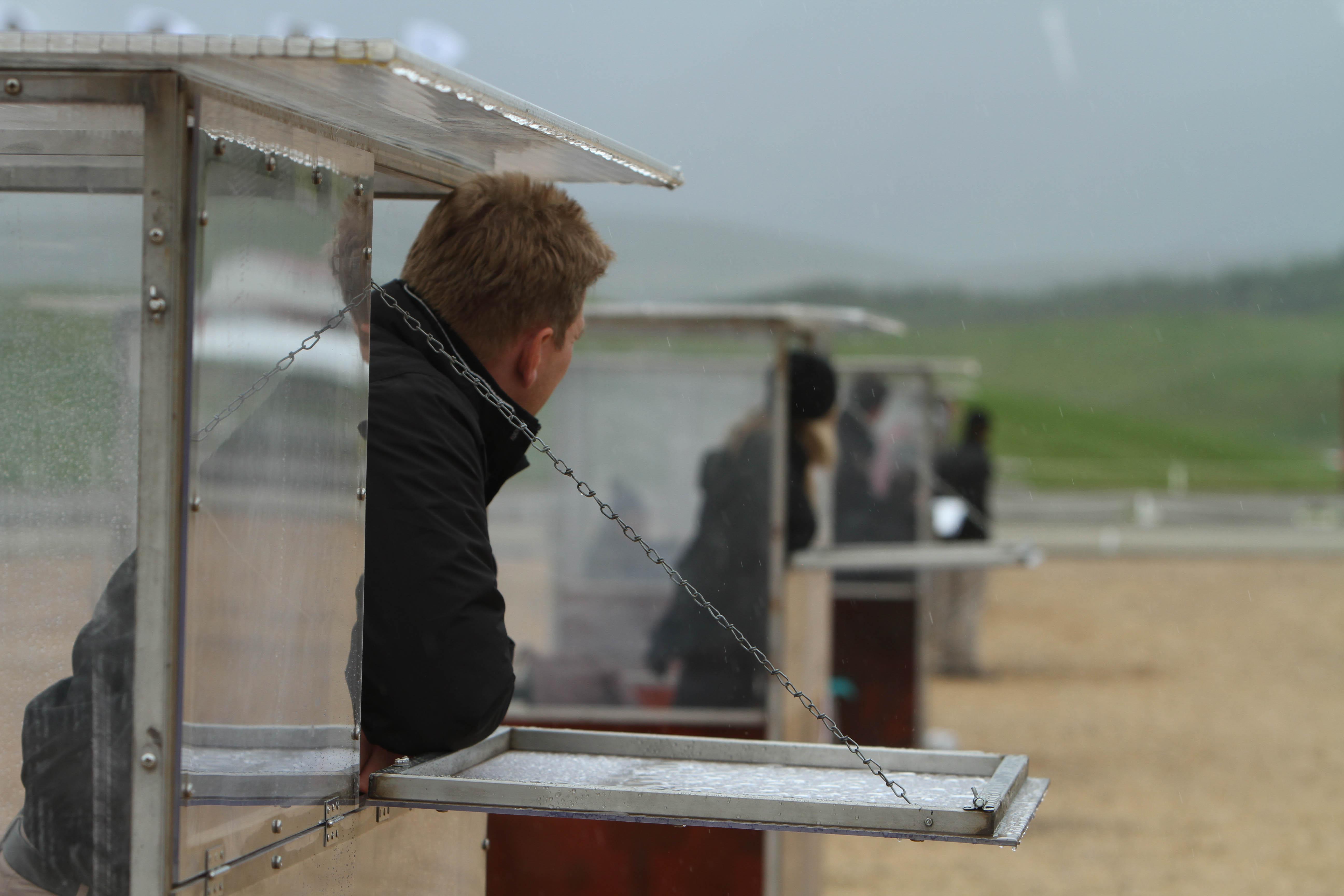 Domarna kikar fram ur sina domarbås Foto: Karin Cederman/ishestnews.se