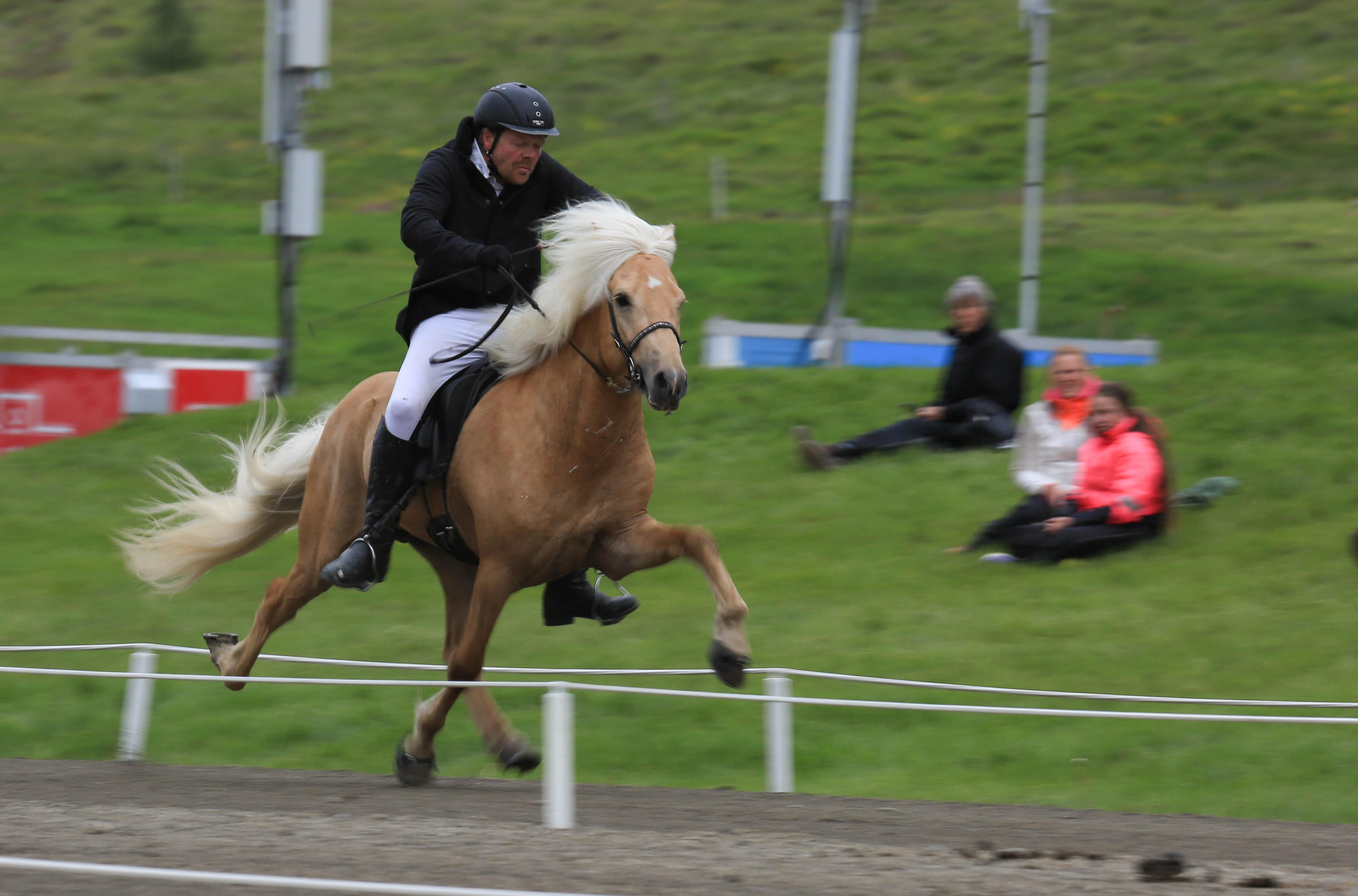 9.0 för pass – Draupnir frá Stuðlum och Daniel Jónsson Foto:Yvonne Benzian Ishestnews.se