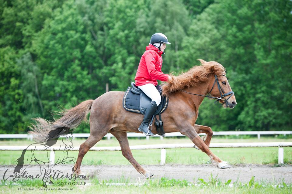 Eirarros från Smedjegården och Edvin Klerdal Foto: Caroline Pettersson