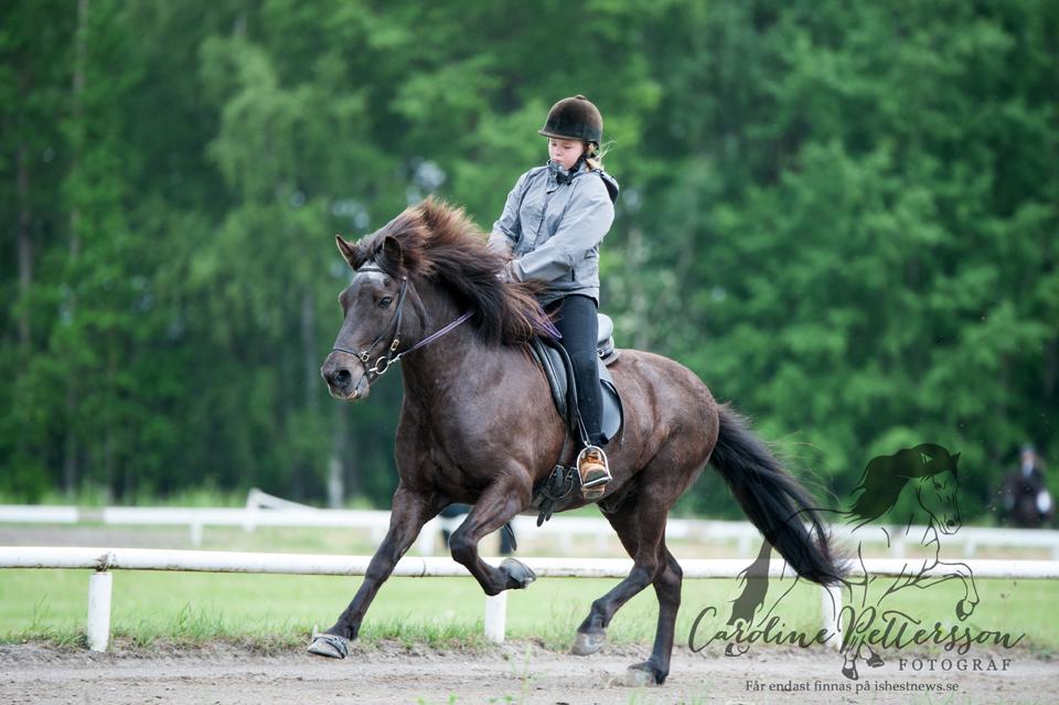 Elin Norén på hästen Muninn från Smedbygget Foto: Caroline Pettersson