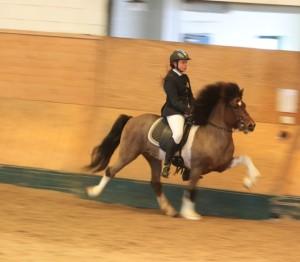 In action! Johanna Wingstrand och Pegasus.