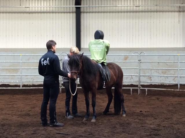 First Rider-dockan får lära hästen att bära ryttare. Foto: Änges Kristina Lundén
