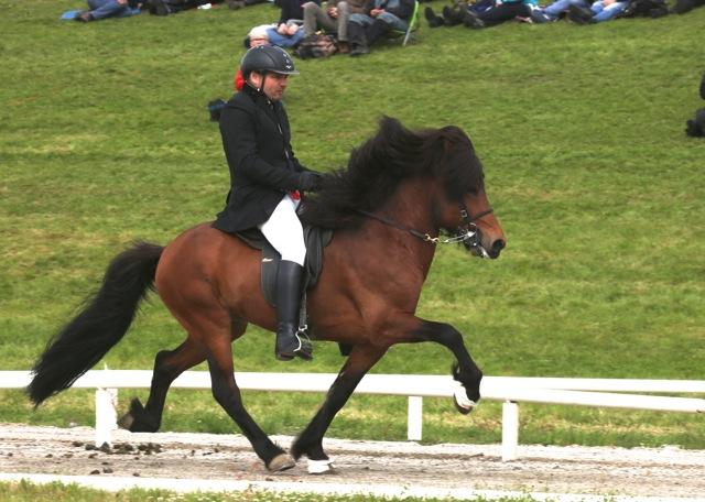 Gródi och Steingrimmur ligger på tredje plats. Foto: Yvonne Benzian/ishestnews