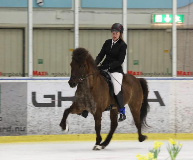 Gudmunda och Visir i ledning. Foto: Ishestnews.se