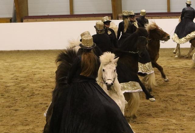Glitter, glam och galet fina hästar. Foto: Ishestnews.se