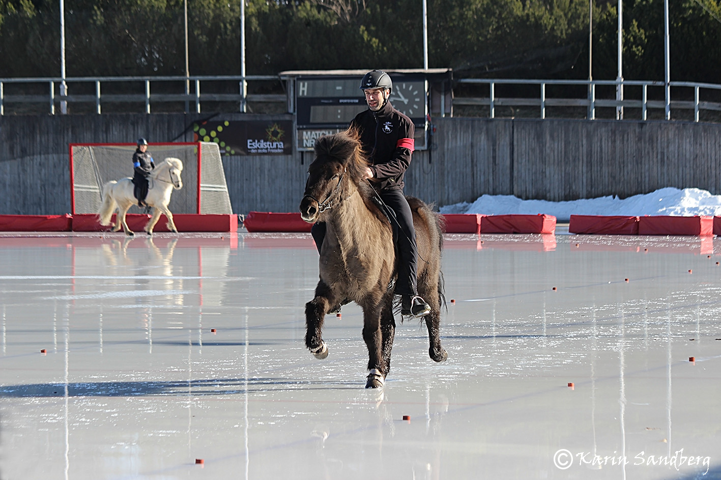 Håkan Pantzar och Nykur frá Sydra Kolugili Foto: Karin Sandberg