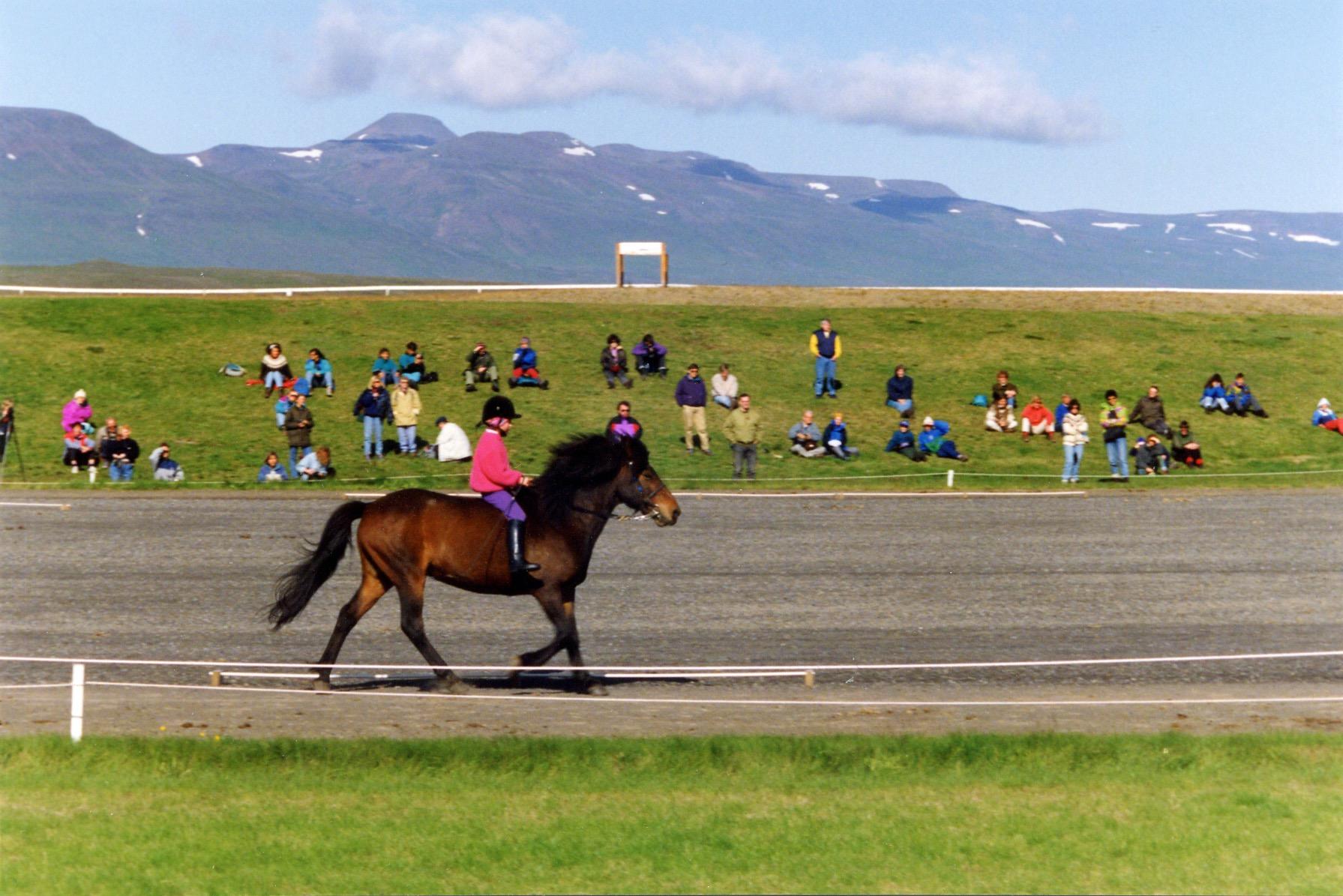 Heidrun som 7-åring på Gunni frá Saurbaer. De var med på en Hestasport show, där man visade turister islandshästen.