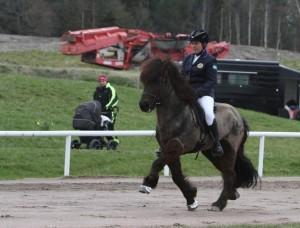 Helene Gustafsson på Fjodor från Sundsby fick högst poäng i fyrgången. Foto: Isabella Mena Winkler