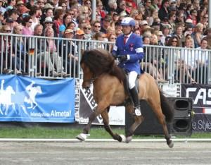 Hnokki kan trava också Foto: Yvonne Benzian/Ishestnews