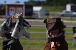 En varg och en björn diskuterar. Foto: Yvonne Benzian/ishestnews.se
