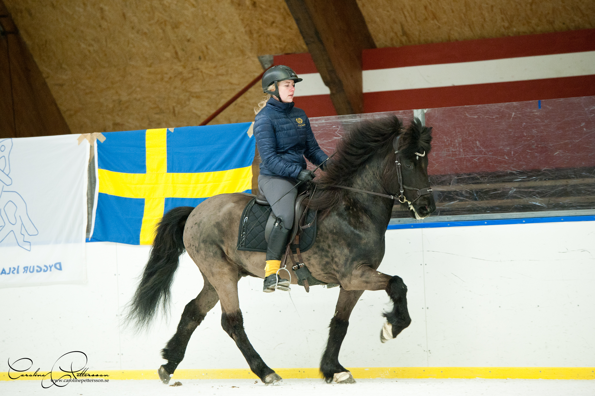 med Jenny Nilsson-Muskos - Röskur från Solhagen6,25